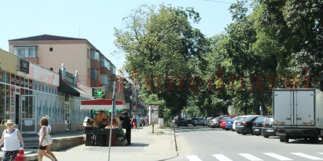 APM Hunedoara cere o nouă variantă a pietonalului din Hunedoara