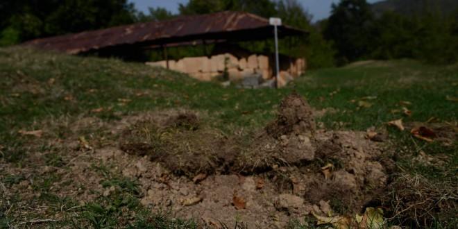 Cetăţile dacice de la Costeşti şi Blidaru au fost vandalizate