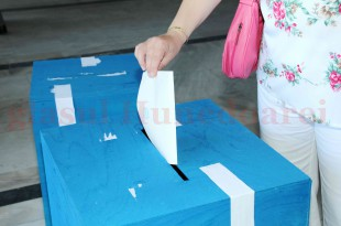 UDMR Hunedoara își propune