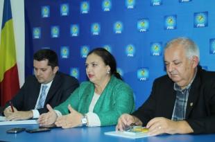 PNL Hunedoara speră că moțiunea de cenzură va trece
