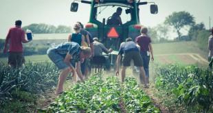 Fermierii hunedoreni vor avea acces la toate măsurile din noul PNDR