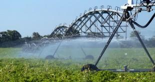 Alte trei măsuri de finanţare au fost lansate de ministrul Agriculturii. Fermierii pot depune proiecte pentru reabilitarea irigaţiilor