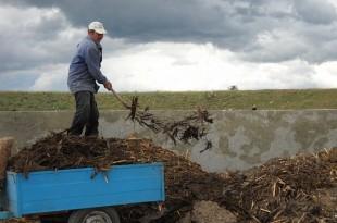 Proiectele pentru gestionarea corectă a gunoiului de grajd ar putea aduce bani frumoşi în mai multe sate hunedorene