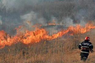 incendiu-de-vegetatie