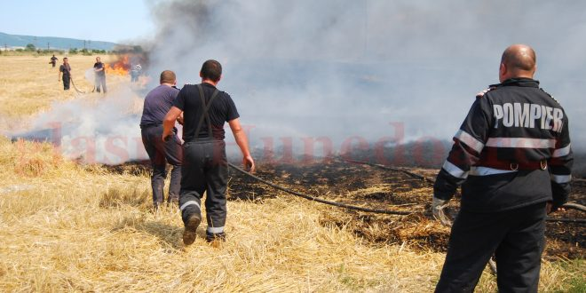 Incendiu vegetatie Watermark(37)