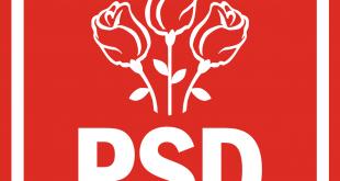 Partidul_Social_Democrat_logo_svg