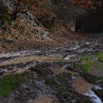 Drumul – mlaştină care, practic, a omorât un cătun