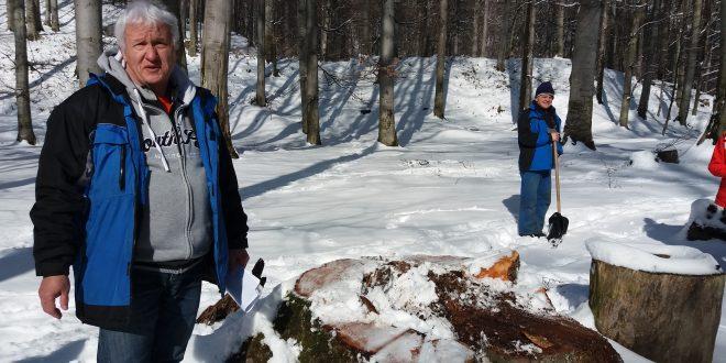 Vladimir Brilinsky declară că operaţiunile de tăiere a arborilor periculoşi de la Sarmizegetusa Regia nu au afectat cu nimic situl istoric