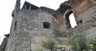 MAIN CETATEA DEVEI