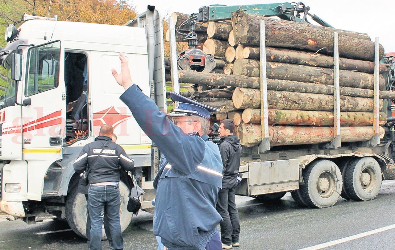 Controlul făcut marţi la Hunedoara dovedeşte că sistemele de prevenţie implementate în ultimii ani pentru stoparea furturilor din păduri nu sunt deloc perfecte (Sursa foto: arhiva Glasul Hunedoarei)