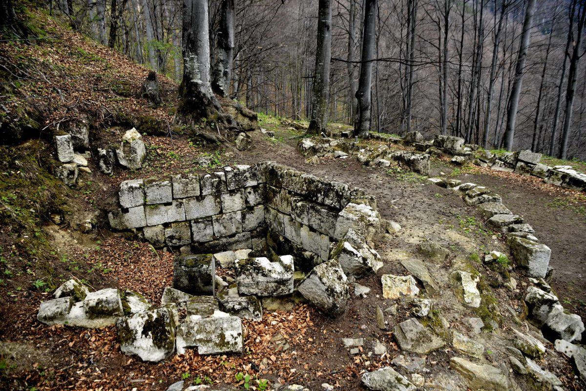 Turnul Pentagonal – doar unul dintre zecile de elemente cu valoare inestimabilă de la Sarmizegetusa Regia care au fost grav afectate de copaci şi riscă să fie distruse dacă peticul de pădure de acolo continuă să fie considerat mai important decât istoria.