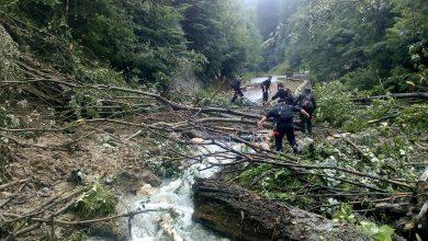 Photo of Drumul spre Sarmizegetusa Regia este blocat