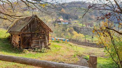 Photo of LUNCŞOARA sau tărâmul secret al caselor ce mor în picioare (Galerie foto)