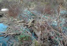 """Albia râului Crișul Alb """"colorată"""" hidos de tone de gunoaie"""