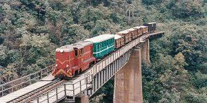 La mijlocul anilor '90 trenul mic al pădurenilor încă mai transporta şi călători pe ruta Hunedoara Govăjdie (foto: Oliver Wileczelek – 26 septembrie 1995)
