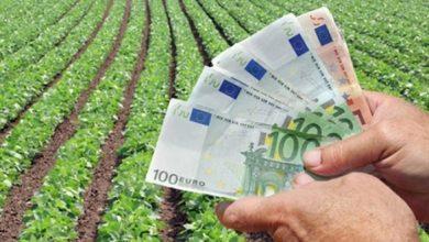 Photo of Cererile unice de plată pentru subvențiile agricole se depun în martie