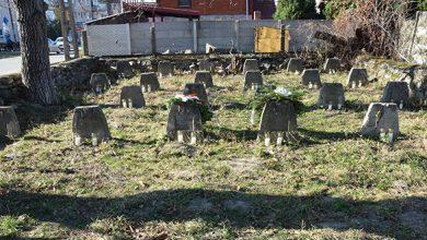 """Photo of Pro memoria. Despre """"Legea asupra regimului mormintelor de răsboi"""""""