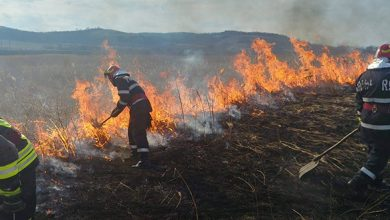 Photo of APIA Hunedoara taie subvențiile pentru fermierii care îşi curăţă terenurile prin incendiere