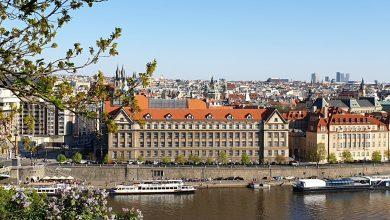 Photo of (Galerie Foto) Florii la Praga