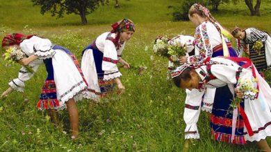 Arhiva Centrului Județean pentru Conservarea și Promovarea Culturii Tradiționale Hunedoara