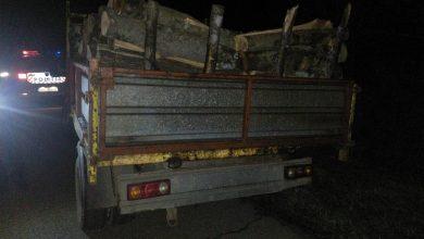 Photo of Bărbat în vârstă de 53 de ani depistat în localitatea Ilia în timp ce transporta material lemnos fără avizul de însoțire