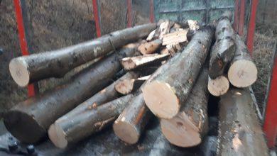 Photo of Amenzi pentru transport ilegal de lemne în municipiului Orăștie