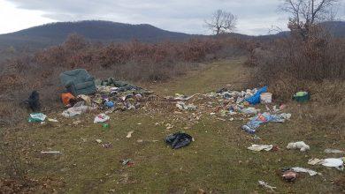 Photo of Imagini dezolante de la marginea pădurii Bejan – sit natura 2000 si arie protejată(galerie foto/video)