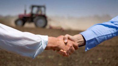 Photo of Dracul nu e chiar așa de negru: Zece știri pozitive pe care fermierii nu trebuie să le rateze!