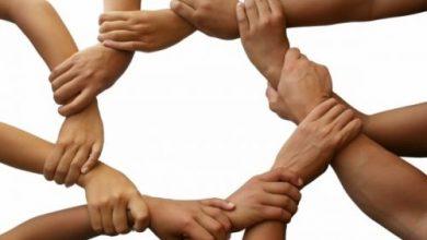 Photo of Rolul voluntariatului în dezvoltarea personalității elevilor