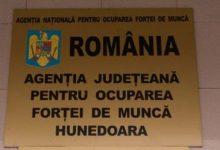 Photo of 3.64% – rata şomajului înregistrat în evidenţele AJOFM Hunedoara în luna august 2020