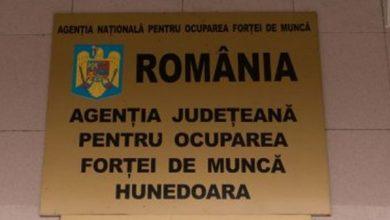 Photo of 3.47 % –  rata şomajului înregistrat în evidenţele AJOFM Hunedoara în luna octombrie 2020