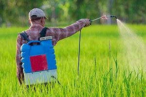 Photo of Un tânăr de 25 de ani comercializa în Piaţa Agroalimentară din oraşul Haţeg  produse expirate pentru protecția plantelor