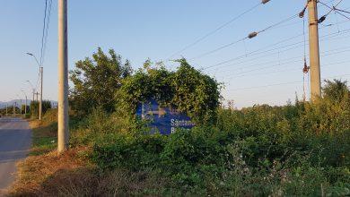 """Photo of """"Iarba verde de acasă, să mă rătăcesc prin lume ea mă lasă"""" – indicatoare rutiere șterse sau ascunse"""