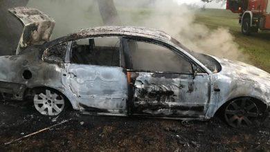 Photo of Incendiu la un autoturism în localitatea Strei soldat cu doi tineri răniţi.