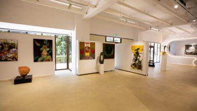 """Photo of Galeria Națională de Artă """"FORMA"""" din Deva, redeschisă după reamenajarea spațiului expozițional"""