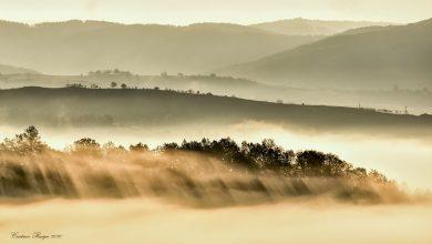 Photo of Ceață curgătoare… – Fotografia zilei