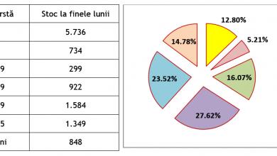 Photo of 3,34 % – rata şomajului înregistrat în evidenţele AJOFM Hunedoara în luna decembrie 2020